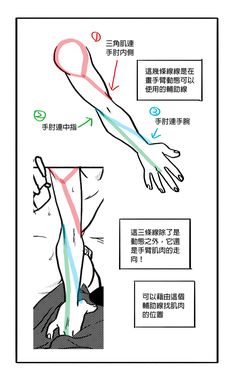 """dconthedancefloor: """" Found some hands tutorial by me Not in English but hope it will help??????? """""""