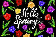Hello spring! on blackboard by Rommeo79 on @creativework247