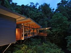 tree house over a hillside forest