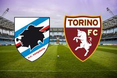 Sampdoria-Torino le probabili formazioni