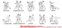 See videos and read articles on the martial art of karate at http://www.budospace.com