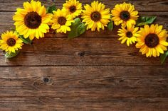 DULUDA Sunflower Brown Rustic Wood Backdrop for Photography Child Baby Shower Birthday Party Background Banner Picture Photo Studio Booth Decoration Sunflowers Background, Background Banner, Wooden Background, Classroom Background, Paper Sunflowers, Wood Wallpaper, Wallpaper Backgrounds, Wallpapers, Background For Photography