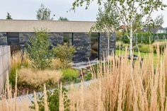 Landscape Architecture, Landscape Design, Garden Design, Natural Landscaping, Garden Landscaping, European Garden, Garden Features, Land Art, Pavement
