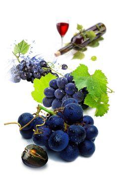 Виноград Бастардо.