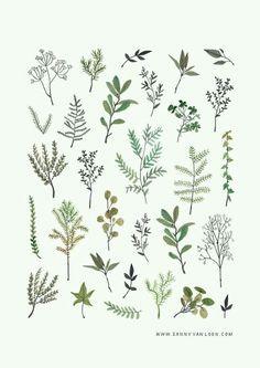Image result for pressed flower art