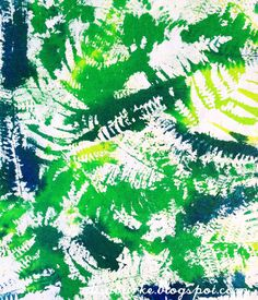 ferns and paint