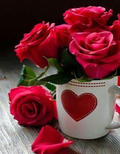 ღ Everlasting Language Beauties of the Flower Rose ღ: Romantic Red Roses Beautiful Rose Flowers, Love Flowers, Good Morning Flowers, Love Images, Morning Images, Flower Power, Flower Arrangements, Valentines, Photos