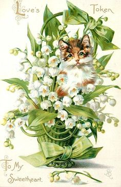 Cat with lily-of-the-valley vintage postcard
