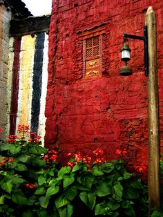 So beautiful... the flowers, the street lamp, that window, the wall beside... wow!