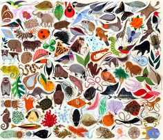Tree of Life, by Charley Harper, 1961, illustration from the Giant Golden Book of Biology