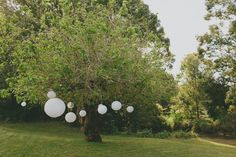 Chinese lanterns hung from a tree = pretty and inexpensive ceremony decor | Corné & Lara Photography