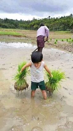 All must learn to work and to take over it, totally their life. Poor Children, Precious Children, Beautiful Children, Village Photography, Cute Kids Photography, Kids Around The World, People Around The World, Nature Pictures, Beautiful Pictures