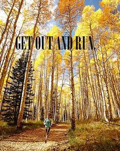 Motivation: winter, spring, summer & fall - it's always beautiful on the trail.