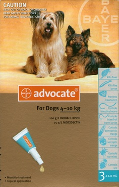 Advocate for dogs prevents parasite infections, fleas, heartworm, gastrointestinal worms, mites and lice. Cat Medicine, Warrior Cats Books, Cats 101, Cat Whiskers, Brown Dog, Flea And Tick, Cat Quotes, Medium Dogs