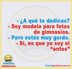 Chistes Geniales – Chistes geniales para reír hasta mas no poder. Pepito Jokes, Stupid Funny Memes, Funny Quotes, Gym Humor, Sayings, Anime, Model, Vestidos, Best Funny Jokes