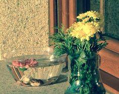 Deposita en el fondo de un bol transparente conchas, llénalo de agua con flores naturales flotando, para intentar conseguir un ambiente zen.