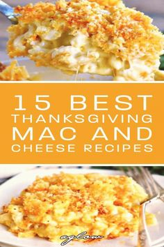 #Mac #and #cheese #casserole #recipes #bacon thanksgiving recipes perfect classic holiday family cheese these bacon with feed from dish best side 15 Best Thanksgiving Mac and Cheese Recipes Mac and cheese is the perfect side dish for the thanksgYou can find Mac and cheese casserole and more on our website Southern Mac And Cheese, Classic Mac And Cheese, Best Macaroni And Cheese, Mac And Cheese Bites, Easy Mac And Cheese, Bacon Mac And Cheese, Mac And Cheese Casserole, Casserole Recipes, Gourmet Mac N Cheese Recipe