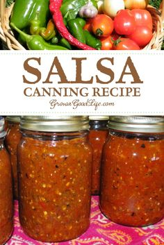 Tomato Salsa Canning Recipe: This tomato salsa canning recipe is packed with tomatoes, peppers, onions, and just enough spicy tingle to tickle your taste buds. Open a jar any time and enjoy with tortilla chips or with your favorite Mexican inspired meals. Tomato Salsa Canning, Salsa With Canned Tomatoes, Salsa Canning Recipes, Tomato Salsa Recipe, Canning Tomatoes, Canning Tips, Canning Peppers, Salsa For Canning, Best Canned Salsa Recipe