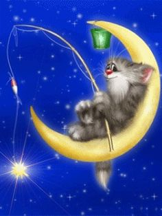 cute cat gif ~ CLICK ON THE PICTURE (gif) AN WATCH IT COME TO LIFE. **....♡♥♡♥♡♥Love★it