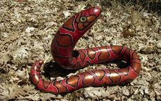 long twisted gourds which are known as snake gourds they called out to ...