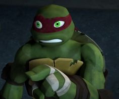 I think Raph has the best facial expressions in this show. :3