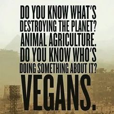 go #vegan for your health, the planet and for the animals ,