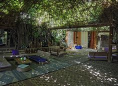 Awesome use of plants for patio cover.