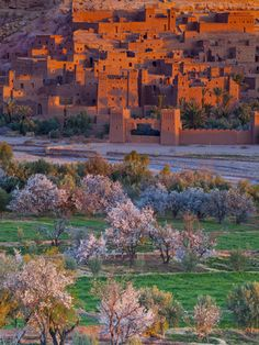 Ait Benhaddou, Atlas Mountains, Morocco one of the most amazing places I've ever been.