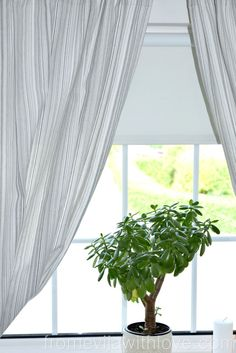 blackout blind review with Order Blinds - thermal range
