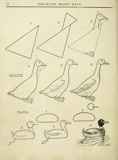 """Today'S drawing class featuring lessons from the 1921 vintage book """" drawing made easy : a helpful book for young artists"""" by e lutz Drawing Lessons, Book Drawing, Drawing Techniques, Drawing Sketches, Art Lessons, Painting & Drawing, Sketching, Bird Drawings, Doodle Drawings"""