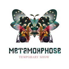 identity design by Maria Vittoria Benatti, Metamorphose