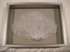 DIY Framed Sea Fan Project …. CHECK! @ A Well Dressed Home