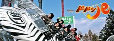 The Dodonpa at Fuji-Q Highland in Yamanashi, Japan. Fastest Roller Coaster, Yamanashi, Mount Fuji, Amusement Park, Attraction, Monster Trucks, Roller Coasters, Japan, Places