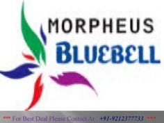 Cheapest 2BHK Flats Only @ 26 lakhs in  Morpheus Bluebell  Morpheus Bluebell is coming with International standard infrastructure and amenities.