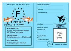 plane_permis_pilote