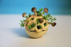 """Designer holandesa criou """"Edible Growth"""", um projecto de produção de alimentos saudáveis a partir de impressoras 3D. Bactérias """"boas"""" e sementes levam até cinco dias a desenvolverem pequenas empadas que, na verdade, estão vivas"""
