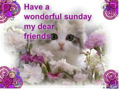 Wonderful Sunday