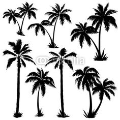 Palms Silhouettes DOWNLOAD THIS DESIGN ON FOTOLIA