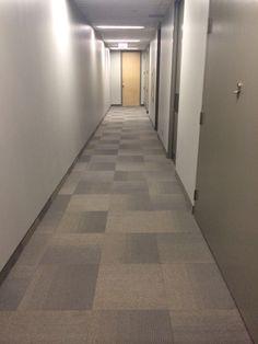 Apartment Building Hallway Carpet 300 cimarron dr, floresville, tx 78114