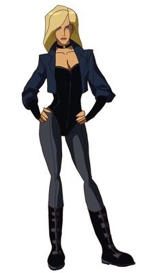Black Canary: Young Justice T. Black Canary Costume, Black Canary Comic, Arrow Black Canary, Justice League, Marvel Dc, Top Superheroes, Dinah Drake, Cry Anime, Dinah Laurel Lance