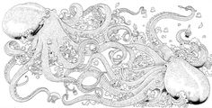 From Animorphia by Kirby Rosanes*Coloring pages colouring adult detailed advanced printable Kleuren voor volwassenen coloriage pour adulte anti-stress kleurplaat voor volwassenen Line Art Black and White