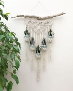 80+ Best Vintage Macrame Plant Hanger Creations