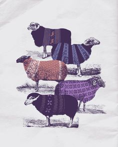 Yes! Cool Sweaters on a sweater! by Jacques Maes