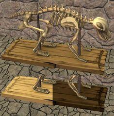 Animal Skeletons on Display Dinosaur Skeleton, Dinosaur Bones, Dog Chew Bones, Sims 2 Hair, Dinosaur Posters, Don't Fear The Reaper, Red Bluff, Animal Skeletons, Sims 4 Mm Cc