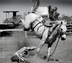 'Humility in Pride' Poem. Rodeo. Cowboy Poetry. The Cowgirl. countrybestblog.com