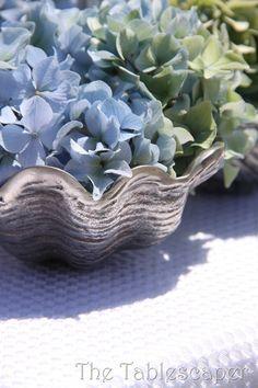 Blue Hydrangeas in a clamshell