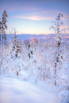 Saari, Southern Finland, Finland, by Mikko Muinonen, on flickr.