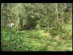Sharing Trails with Horses.  A short informational video.
