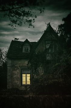 Creepy House With Cat