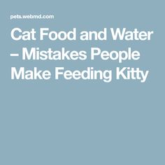 Cat Food and Water – Mistakes People Make Feeding Kitty